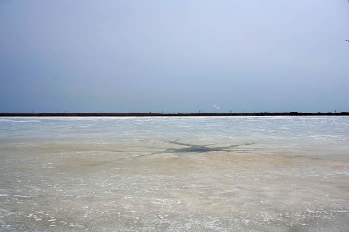 ウトナイ湖湿原