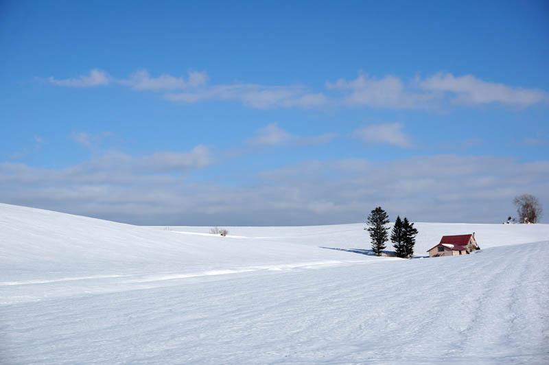 雪の赤い屋根の家