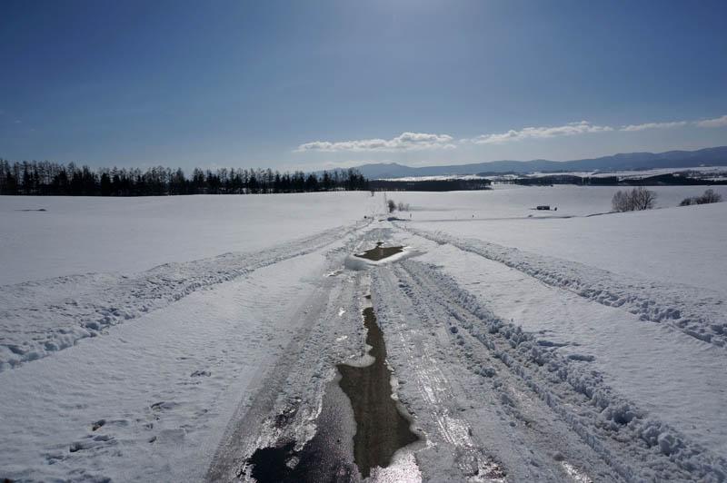 雪の美瑛の道