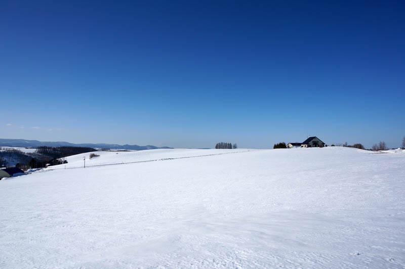 雪の三愛の丘