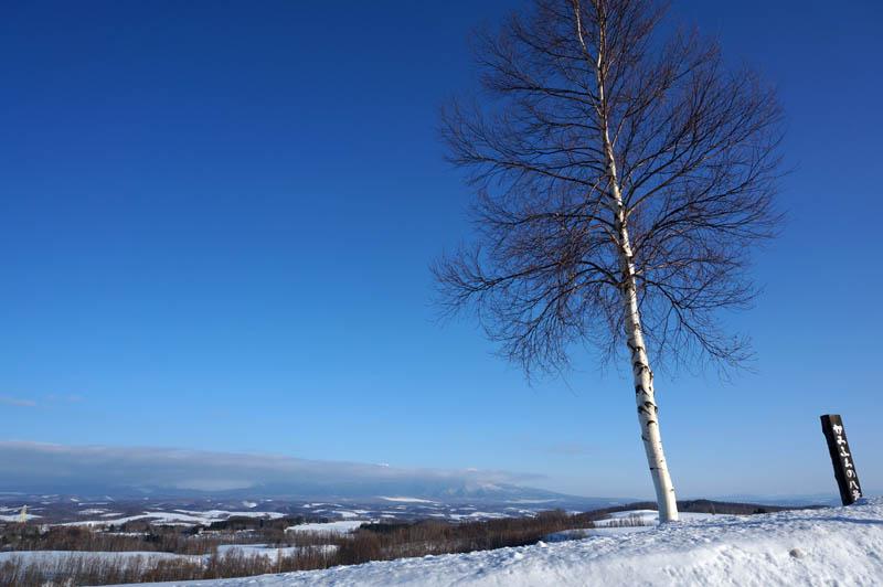 雪のジェットコースターの路
