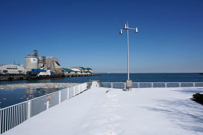 冬のかつない臨海公園