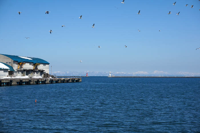 冬の小樽埠頭