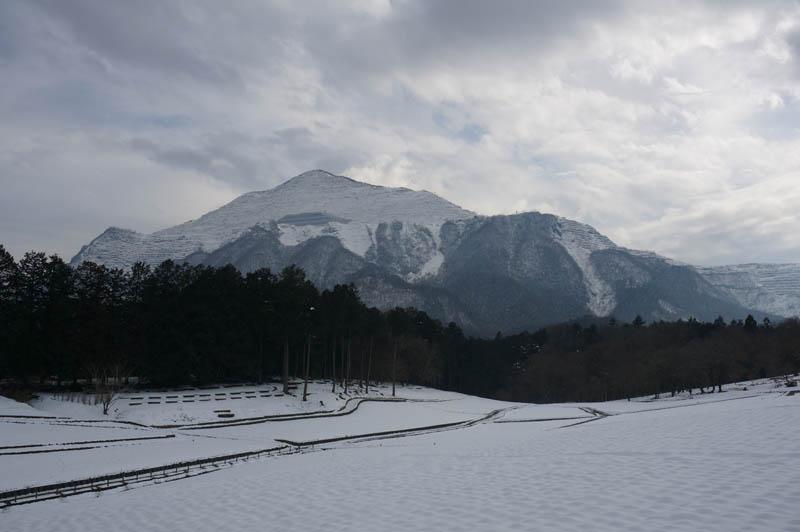 冬の羊山公園芝桜の丘