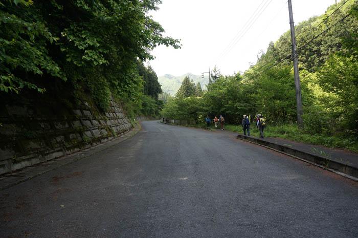 武甲山への道