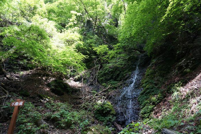 武甲山不動の滝