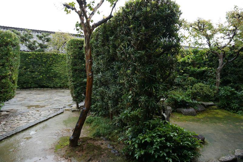御城番屋敷の庭
