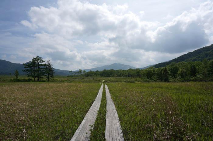 尾瀬ヶ原と木道