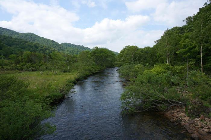尾瀬ヶ原を流れる只見川