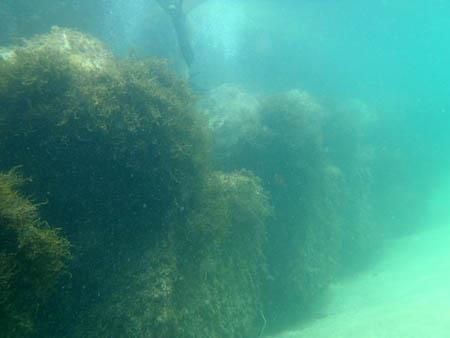 浜詰海水浴場シュノーケリング