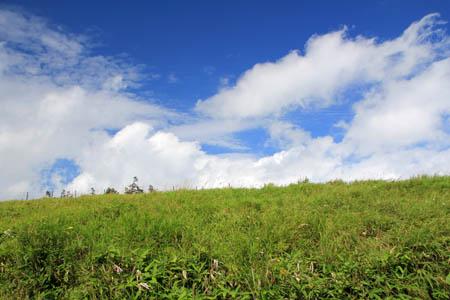夏の美ヶ原