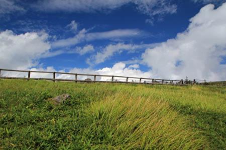美ヶ原の牧場