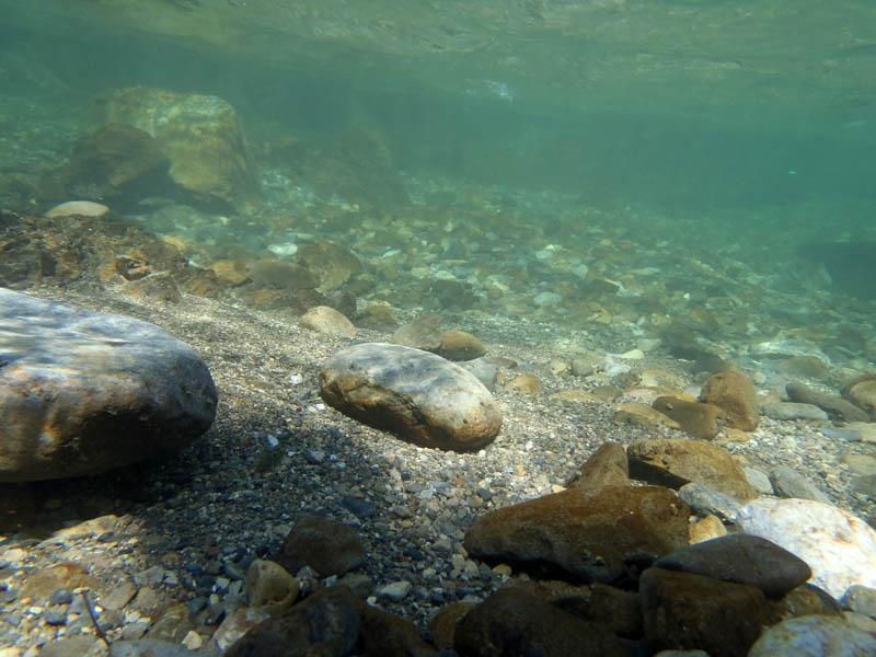 北山川の清流