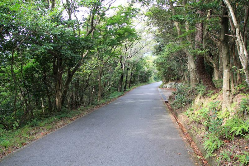 横山展望台への道