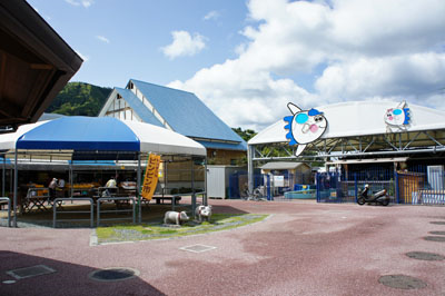 みかめ海の駅潮彩館