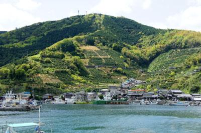 みかめ海の駅潮彩館からの風景