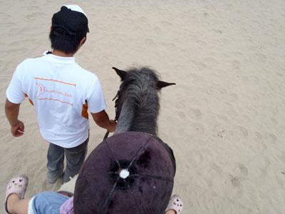 蒜山ホースパーク子供乗馬