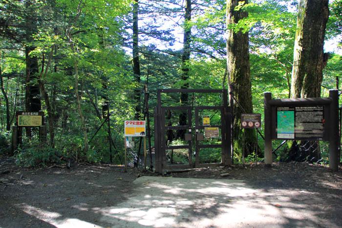 湯滝登山道入口