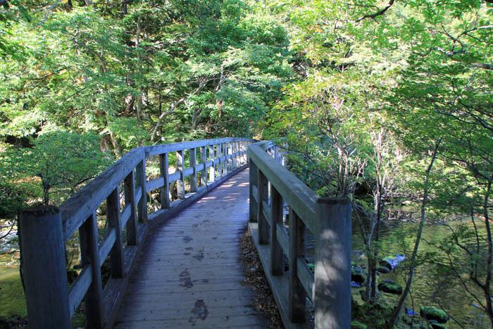 湯ノ湖遊歩道