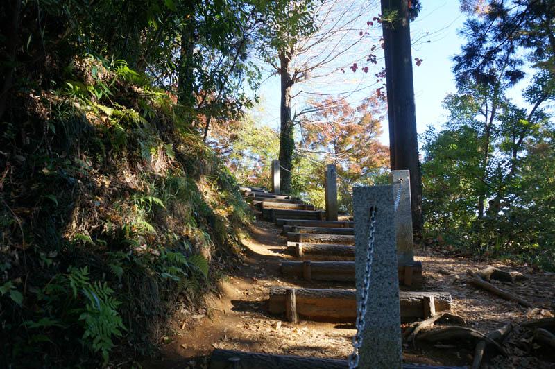 朝の高尾山登山