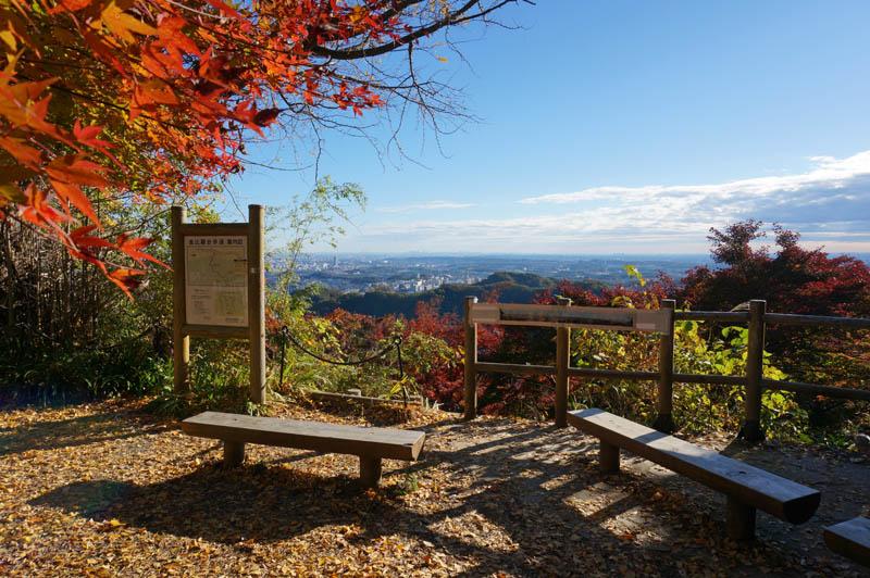 秋の金毘羅台