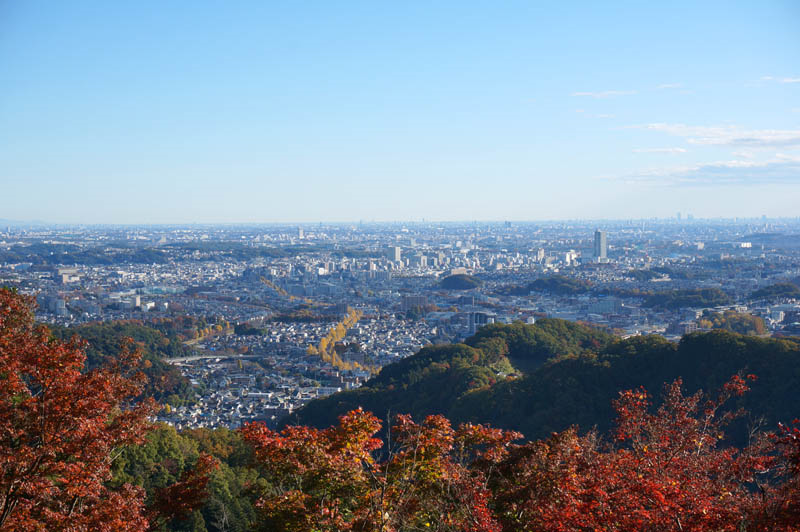 秋の金毘羅台からの展望