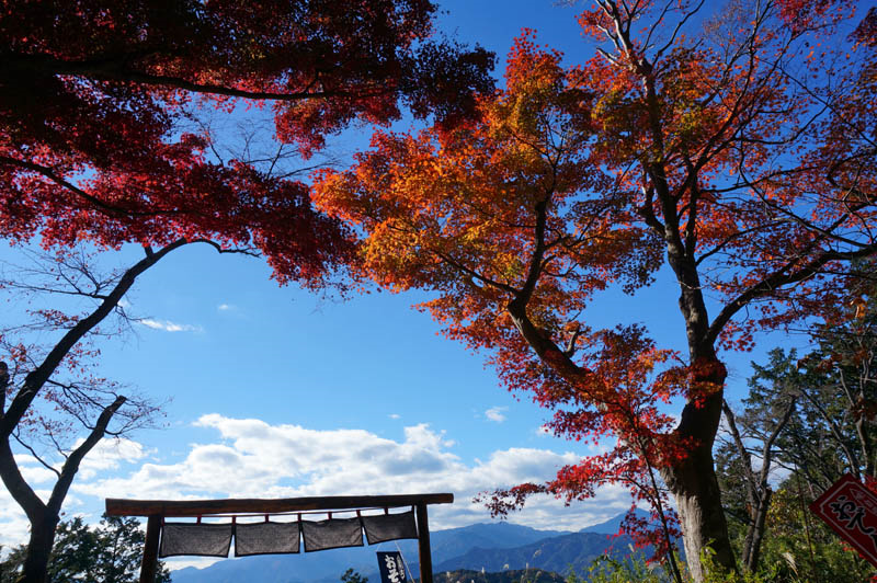 高尾山紅葉台の茶屋