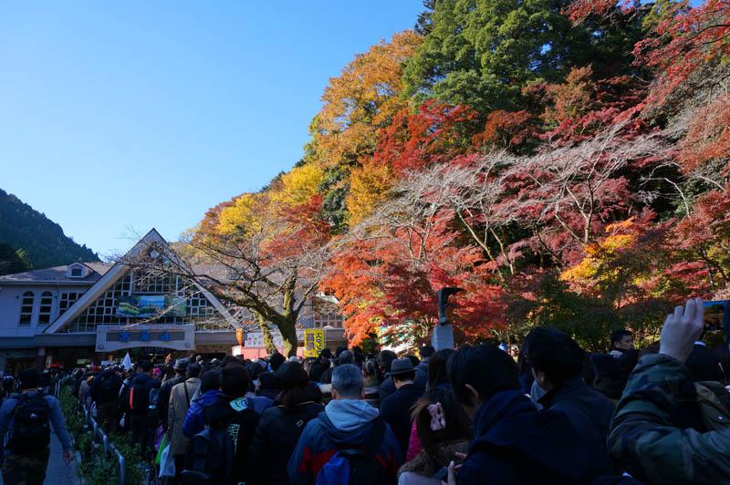 秋の高尾山の渋滞