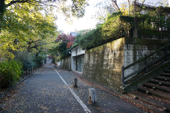 武蔵関公園付近の住宅街