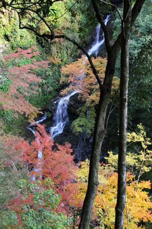 紅葉の白滝