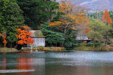 紅葉の金鱗湖