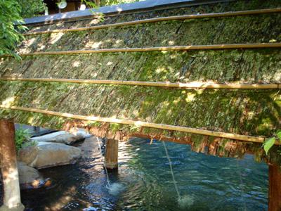 黒川温泉こうの湯森の湯