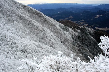 石墨山の霧氷