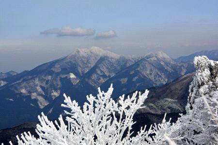 石鎚山と霧氷