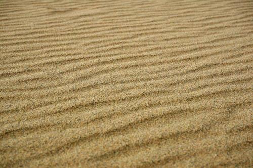 鳥取砂丘砂紋