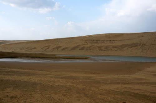 鳥取砂丘オアシス