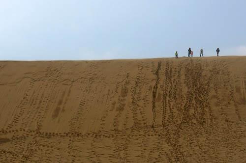 鳥取砂丘馬の背