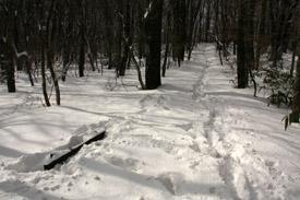 皿ヶ嶺の雪のベンチ