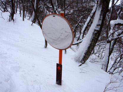 大雪の林道