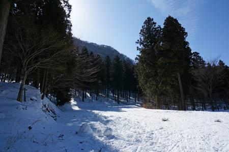 雪の上林森林公園