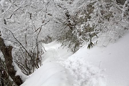 雪の皿ヶ嶺