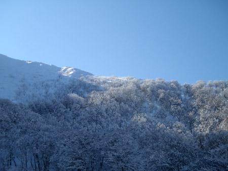 雪の大山のダウンヒル