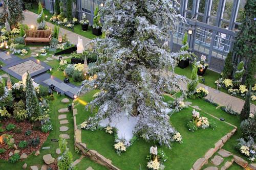 奇跡の星の植物館クリスマス
