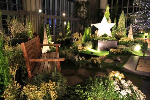 奇跡の星の植物館のクリスマス