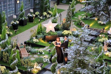 奇跡の星の植物館クリスマスイベント