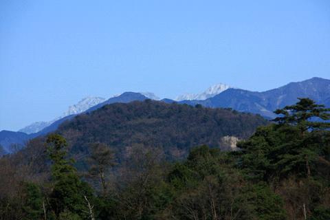 七折梅園からの石鎚山
