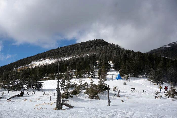 冬の八ヶ岳坪庭