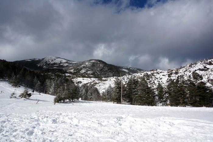 雪の八ヶ岳坪庭