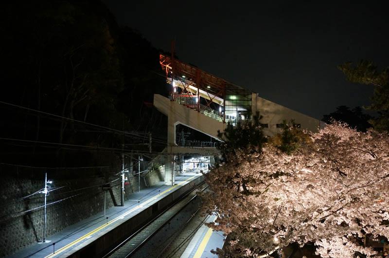 須磨浦公園駅の夜桜