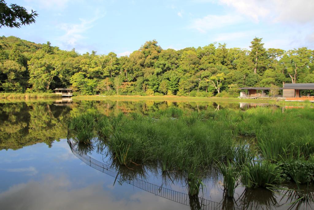 豊川茜稲荷神社からの勾玉池